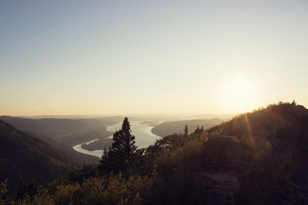 The Rise of Middleware Companies